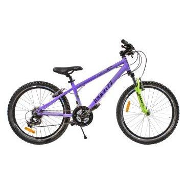 Подростковый горный велосипед GRAVITY EXPEDITION 2015Подростковые<br>GRAVITY EXPEDITION 2015<br>Яркий и шустрый подростковый велосипед GRAVITY EXPEDITION DISC, с 24 дюймовыми колесами. Велосипед отлично подойдет для детей в возрасте от 9 до 13 лет. На данной модели установлено навесное оборудование начального уровня.<br><br><br><br><br><br>Общие характеристики<br><br><br>Модель<br>2015 года<br><br><br>Тип<br>подростковый<br><br><br>Возраст ребенка<br>9-15 лет (рост от 135 см)<br><br><br>Область применения<br>горный (MTB)<br><br><br>Вес велосипеда<br>14,2 кг<br><br><br>Рама, вилка<br><br><br>Материал рамы<br>алюминиевый сплав<br><br><br>Размеры рамы<br>17<br><br><br>Амортизация<br>Hard tail (с амортизационной вилкой)<br><br><br>Конструкция вилки<br>пружинно-эластомерная<br><br><br>Уровень мягкой вилки<br>начальный<br><br><br>Конструкция рулевой колонки<br>безрезьбовая<br><br><br>Колеса<br><br><br>Диаметр колес<br>24 дюймов<br><br><br>Материал обода<br>алюминиевый сплав<br><br><br>Материал бортировочного шнура<br>металл<br><br><br>Торможение<br><br><br>Тип переднего тормоза<br>V-Brake<br><br><br>Уровень переднего тормоза<br>прогулочный<br><br><br>Тип заднего тормоза<br>V-Brake<br><br><br>Уровень заднего тормоза<br>прогулочный<br><br><br>Возможность крепления дискового тормоза<br>рама, вилка<br><br><br>Трансмиссия<br><br><br>Количество скоростей<br>21<br><br><br>Уровень заднего переключателя<br>начальный<br><br><br>Наименование заднего переключателя<br>Shimano Tourney RD-TX35<br><br><br>Уровень переднего переключателя<br>начальный<br><br><br>Наименование переднего переключателя<br>Shimano Tourney FD-TY10<br><br><br>Уровень манеток<br>начальные<br><br><br>Конструкция манеток<br>триггерные двухрычажные<br><br><br>Конструкция каретки<br>неинтегрированная<br><br><br>Уровень кассеты<br>начальные<br><br><br>Количество звезд в кассете<br>7<br><br><br>Количество звезд системы<br>3<br><br><br>Конструкция педалей<br>классическая<br><br><br>Руль<br><br><br>Конструкция руля<br>изо